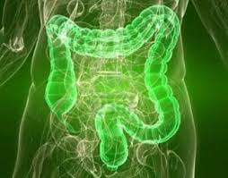 Natural Colon Cleansing: Is It Necessary?