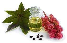 Health Benefits of Castor Oil