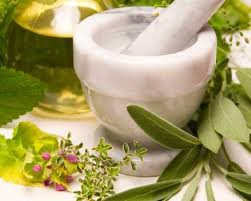 Interesting Facts About Herbal Medicine