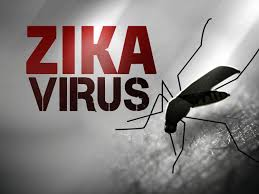 Zika virus can cause severe neurological disorder, scientists say