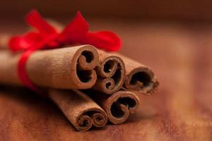 Cinnamon- mudalasini
